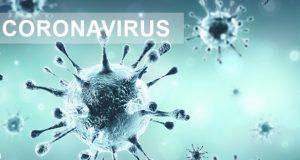 coronavirus cotia