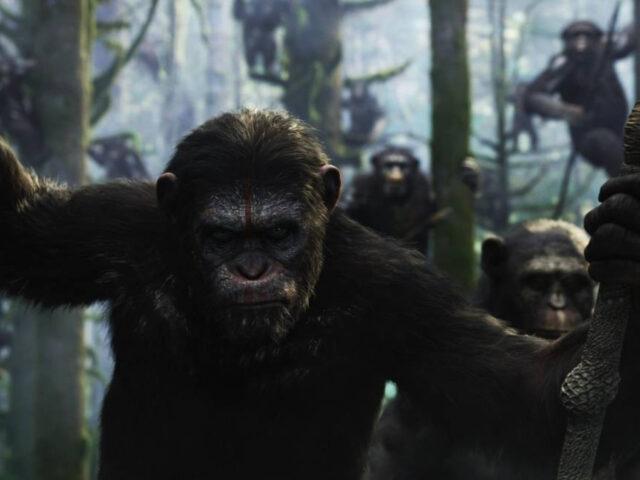 tela quente de hoje 27 07 planeta dos macacos o confronto globo