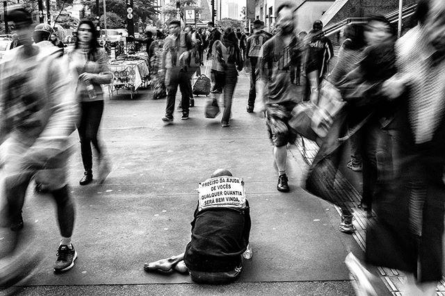 fotografo osasquense